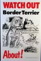 Watch out Border Terrier